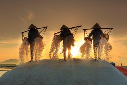 菲律宾大米进口量