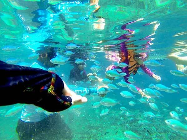 菲律宾跳岛潜水