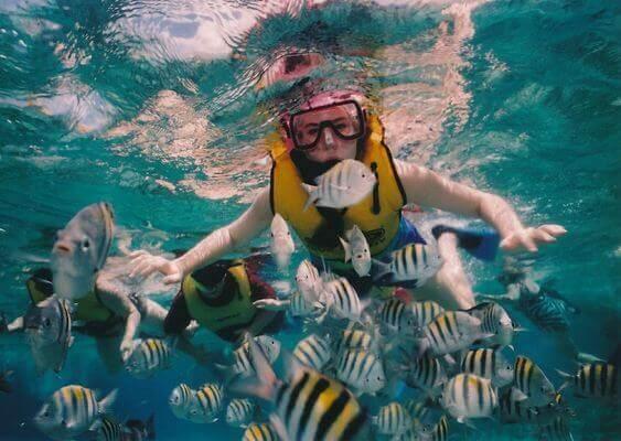 菲律宾宿务潜水