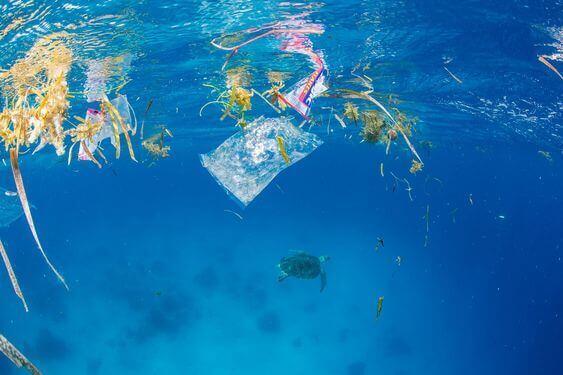 菲律宾垃圾分类-海洋生态问题
