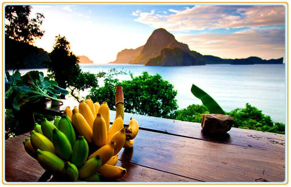 菲律宾国花:岛国风景