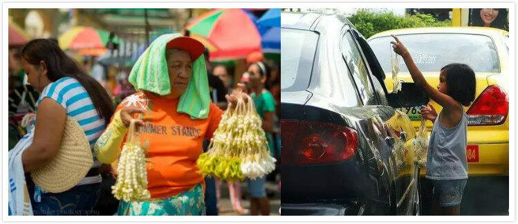 菲律宾国花 :茉莉花花串