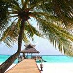 beach-612553_640