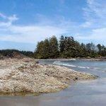 vancouver-island-57188_640