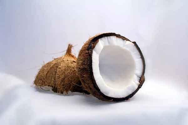 菲律宾椰子