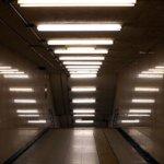 800px-Fluorescent_lamps_artistic